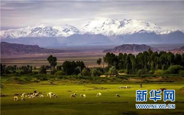 http://www.lzhmzz.com/dushujiaoyu/142356.html